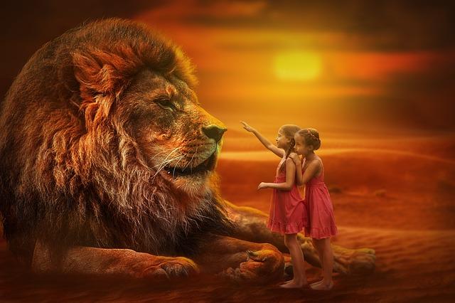 lion-3099986_640